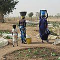 Sénégal (465)