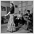 Flamenco à grenade