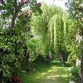 Jardin...