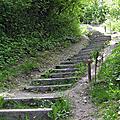 Combien de marches à l'escalier de la côte sainte catherine ?