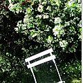 Pause champêtre Marimerveille