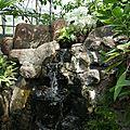 Jardin Botanique (3)