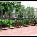 2008-07-26 - WE 17 - Boston & Cambridge 082