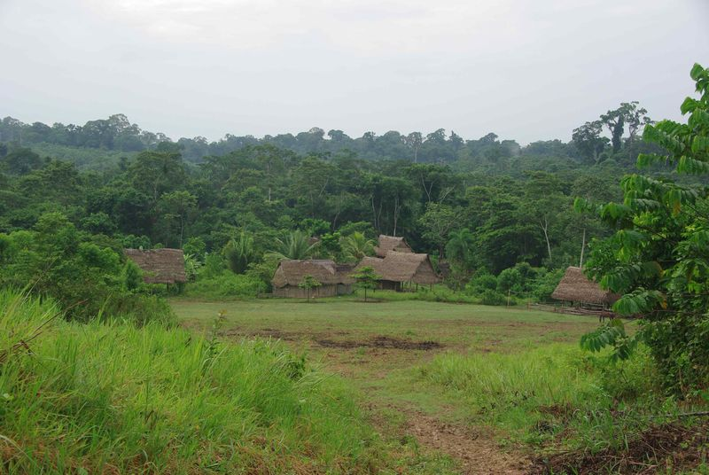 Le hameau de Betania, à mi-chemin entre Contamana et l'écovillag