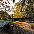L'automne à Talence, près de Bordeaux