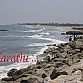 Tranquebar Coast