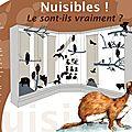 Plan de vitrine d'animaux naturalisés