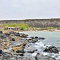 Djibouti's Blog