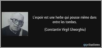 Citation Constantin Vigil Ghéorghiu