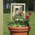 Parc floral d' orléans - côté fleurs