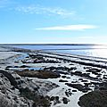 2 La Camargue le 31-01-2013 (9) [1024x768]