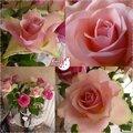 Fleurs & bouquets