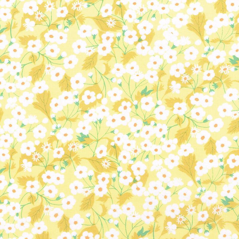 Mitsi Yellow high res