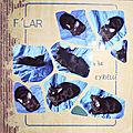 Album scrap de F'lar