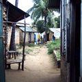 kenya 2006 15