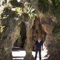 San Sebastian-parque Aiete