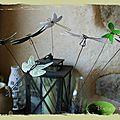 Les libellules ...