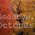 Le bilan d'octobre de céline