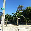 Miami Beach (73)