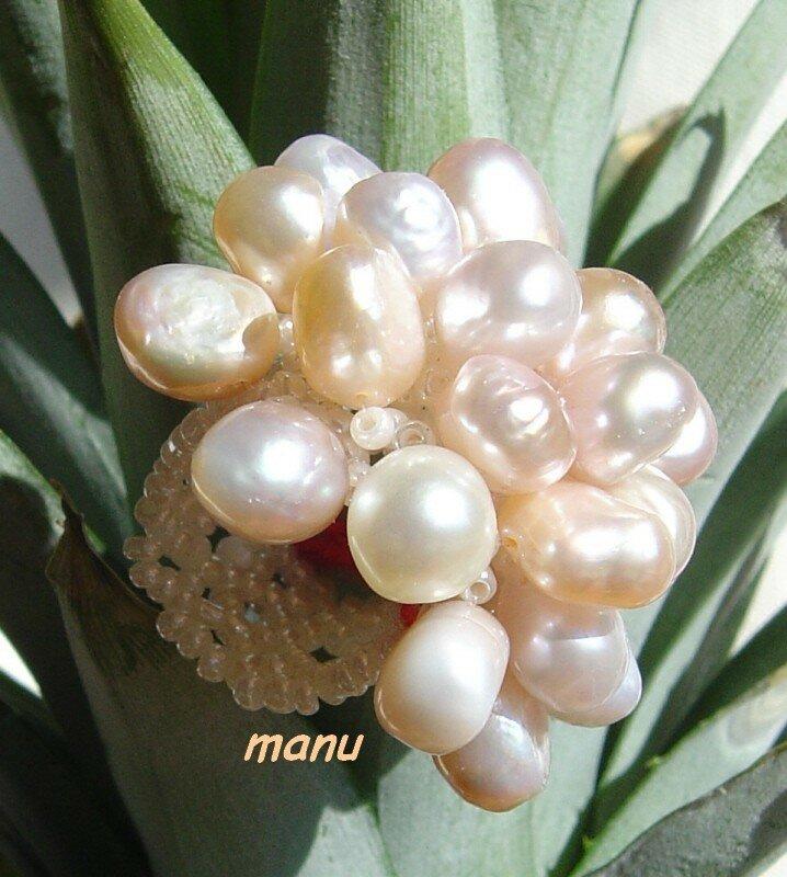 alga perles douces
