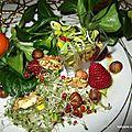 Salade aux graines germées et aux fruits