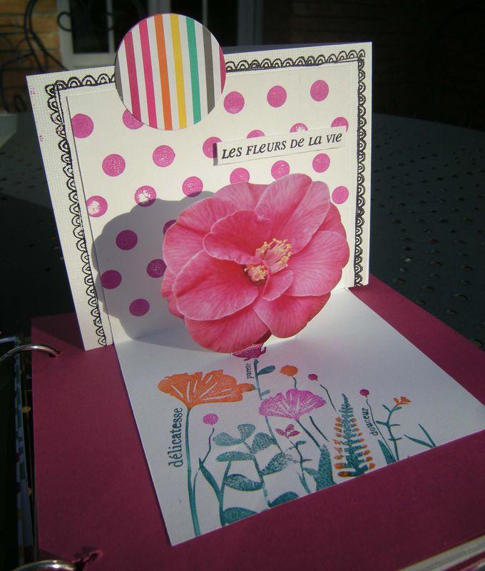 Instants fleuris (18)