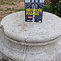 Brooklyn Paradis: Saison 1 De Chris Simon