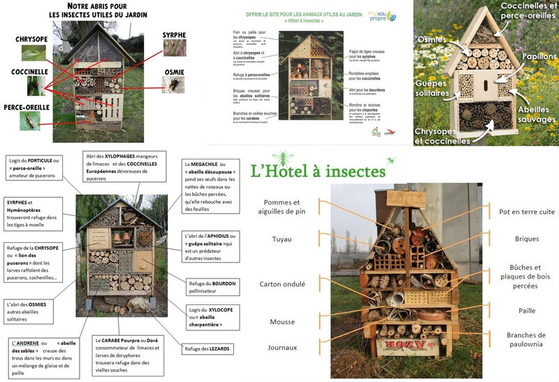 HOTEL A INSECTES (2)