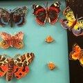 Mes <b>papillons</b> de papier.