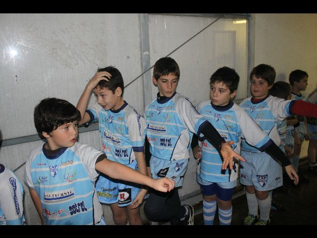 rugby31