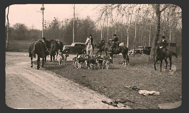 SOLOGNE 1920 Equipage de Cheverny Archives Maul-on