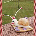 escargot blanc
