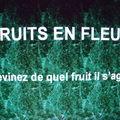 Fruits en fleurs
