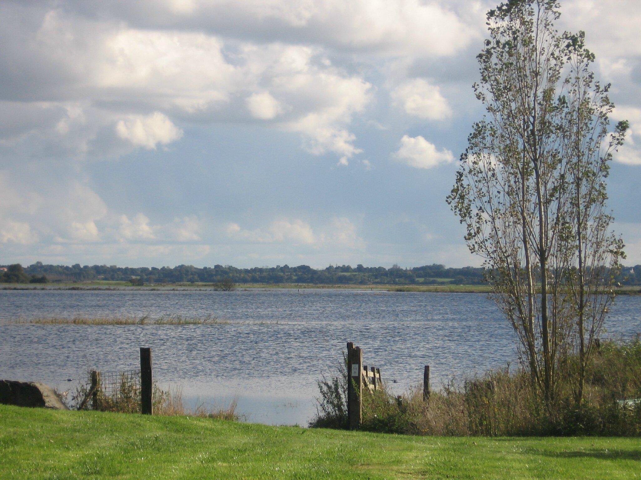 Le marais du Pommier Houesville 14 octobre 2012 006