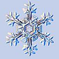 Semaine 49 : du 2 au 6 decembre 13 / semaine l'hiver arrive !!!