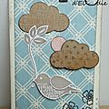 carte_oiseau_mini copie
