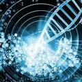 Des biologistes californiens viennent de créer une bactérie dotée d'un code génétique alien