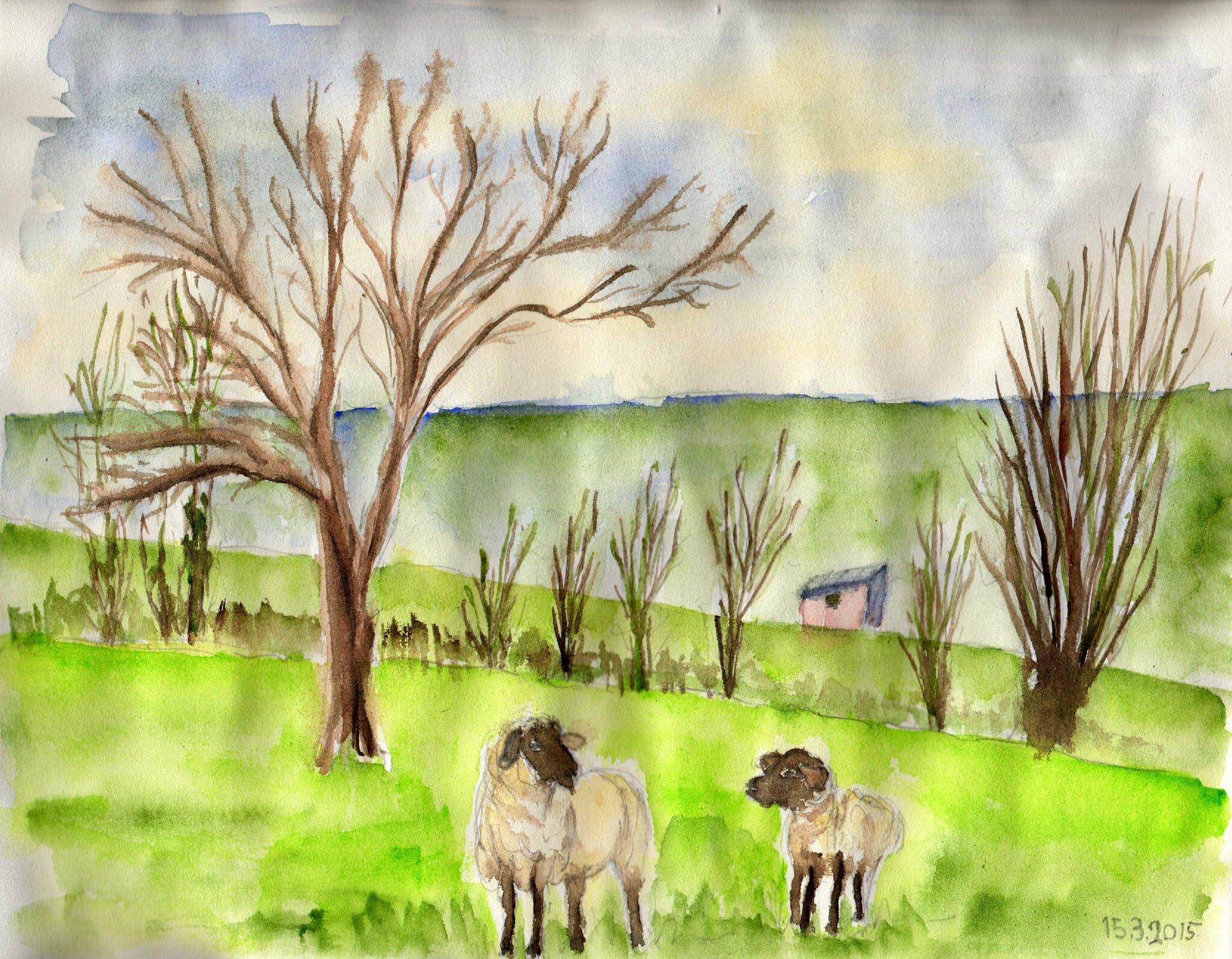 015_arbre&moutons