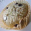 Cupcakes vanille chocolat (sans plv)