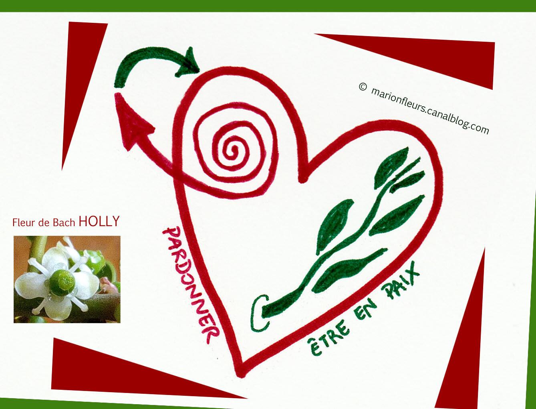 Les blessures du coeur / L'accès au pardon / Vivre le pardon d'Olivier Clerc / Fleur de Bach : Holly