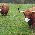 Highlands sans Covid (1) : les <b>bressuirais</b> vachement prudents