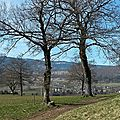 Windows-Live-Writer/Promenade-en-libert_109C1/sans titre20140316_1438182014_2