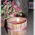 rose des bois 003_modifié-1