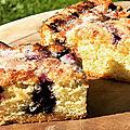 Le Myrtillorak (gâteau express aux myrtilles)