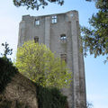 LES CHATEAUX DE LA LOIRE - THE VALLEY OF THE KINGS HISTORIC ROUTE - GIEN, LA FERTE SAINT AUBIN, ...
