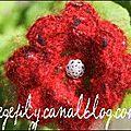 broche bouton crochet irlandais
