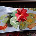 Mon livre pop-up le jardin