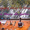 Voyagez dans le temps en train du futur ! (puy du fou - carcassone )