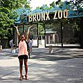 8 juillet - zoo du bronx