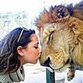 lion femme